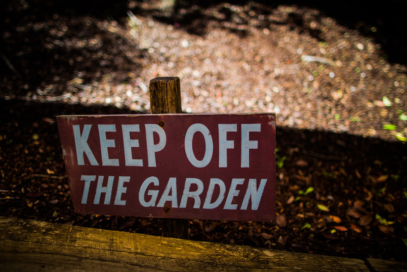 Auburn, Sydney<br /> Keep Off The Garden.
