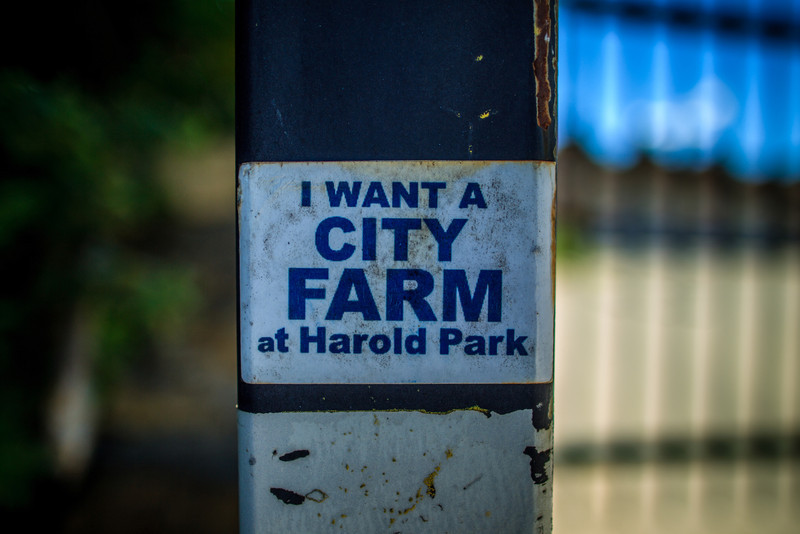 Harold Park Paceway.