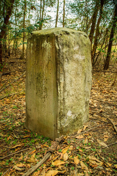 One of the 9 boundary markers (6 still in or near their original locations - this one is near where the road crosses Domain creek) defining the edge of Parramatta. Erected in 1839 by David Lennox.