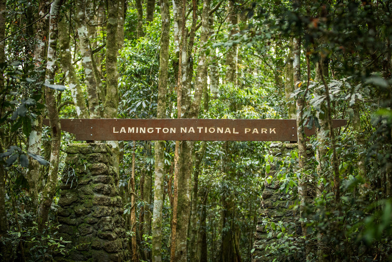 Lamington National Park, QLD, Australia<br /> O'Reilly's Guesthouse, founded 1926 by the O'Reilly brothers.