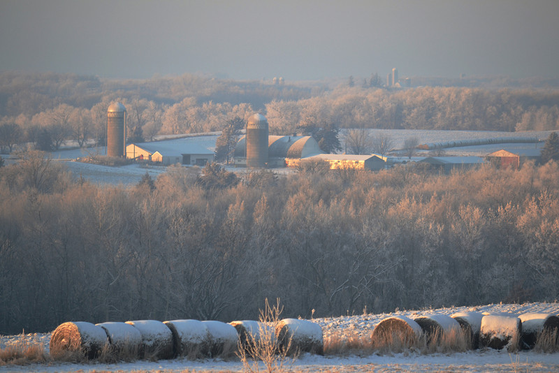 Rural Frost