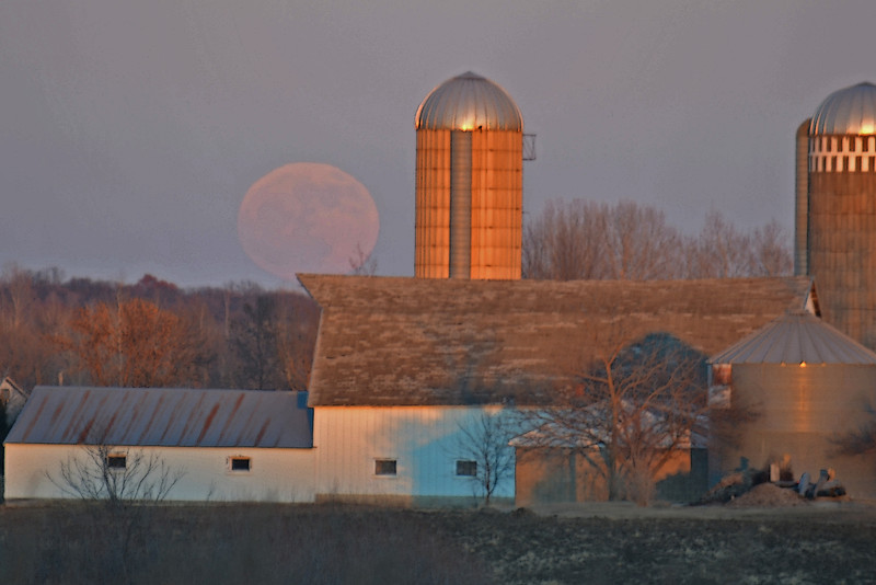 Full Moon Farm