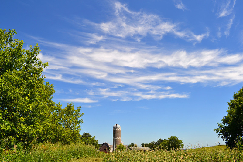 Summer Silo<br /> A beautiful summer day in the Minnesota countryside.