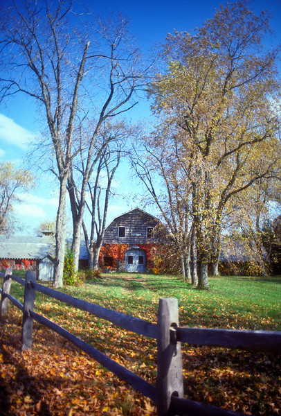 back to the abandoned Highland farm - shot on Kodachrome 64 in late October 1991.  The trees and the fence are now gone.  I like that I've caught it here with the trees nearly naked; preparing for winter.