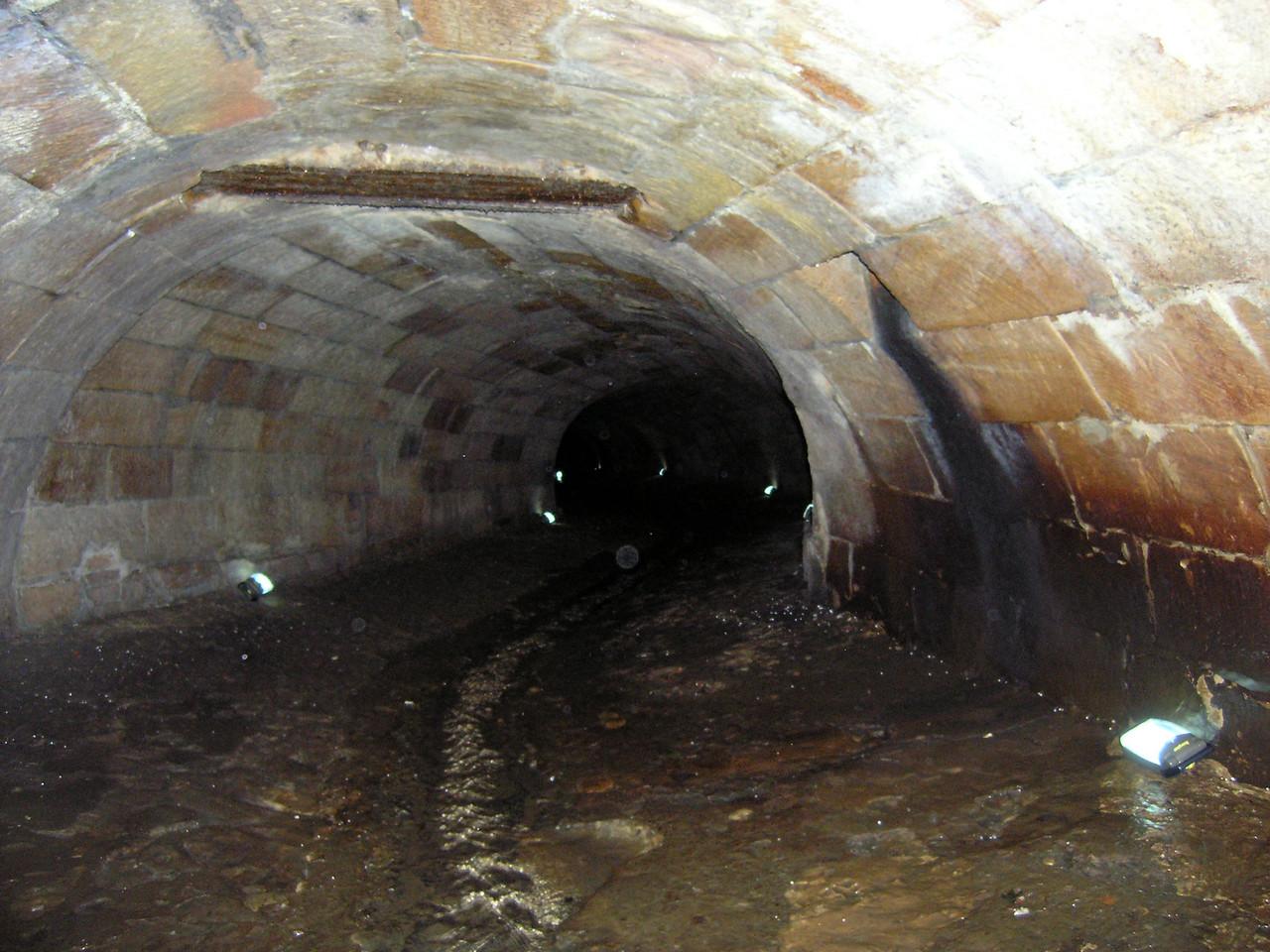 The Tank Stream