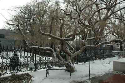 Temple Square - December 2006