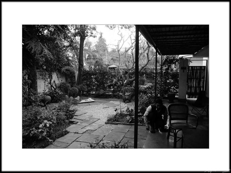 07: Romila Thapar's residence, New Delhi | Romila Thapar's residence, New Delhi 26 February 2010 NIKON D90; 18-200 mm f/3.5-5.6; Center-weighted average; 1/60 sec at f/4.0; ISO-2000;