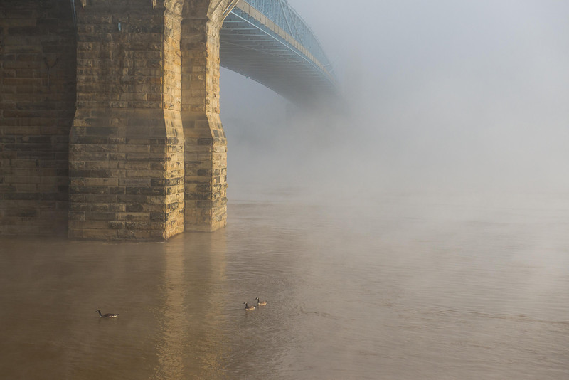 Roebling Suspension Bridge Foggy Morning Roebling Suspension Bridge - Foggy Morning