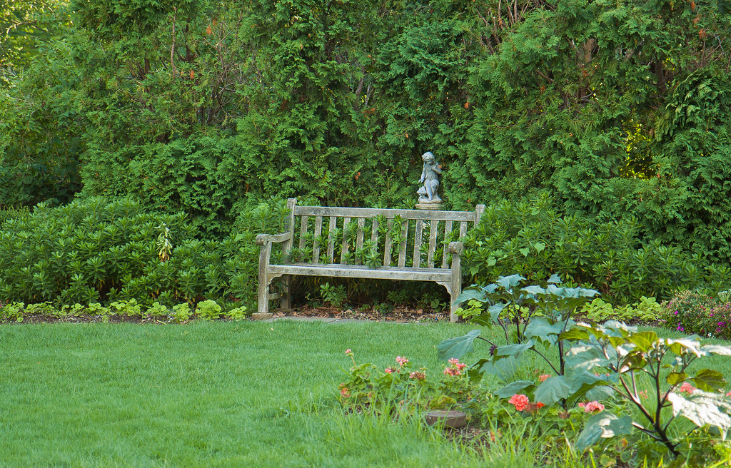 Lonely bench at New Jersey Botanical Gardens, New Jersey