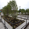 Tour of Thorndike Exchange mixed use development. Landscaped areas on west side of building. (SUN/Julia Malakie)