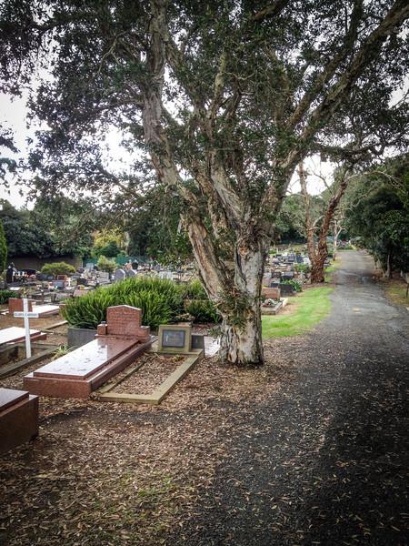 Parma Pl Catholic Cemetery, North Rocks<br /> Parma Pl Catholic Cemetery, North Rocks. Also known as Carlingford Cemetery.