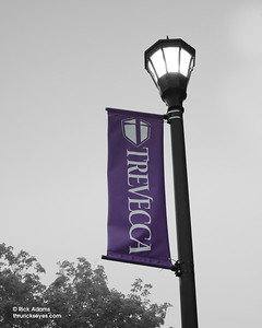 Banners were all around campus.