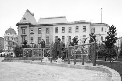 Amenajare colt Spitalul Coltea - Ministerul Agriculturii