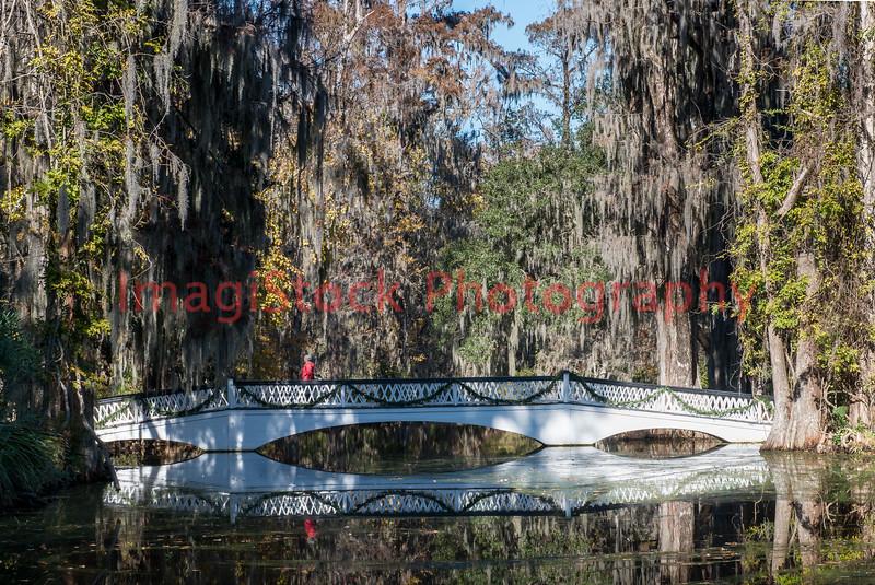 121125 - 2467 Bridge in Middleton Place, Charleston, SC