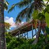 120713 - 0162 Abandonded Bridge in Keys, FL