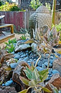 Urban Botanics 6-23-09