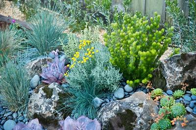 Urban Botanics 6-23-09 15