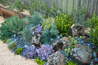Urban Botanics 6-23-09 16