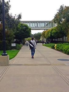 Bridge between two Lucasfilm buildings