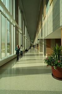 WMU Sangren Hall - 2012 Miller-Davis-12