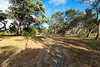 Waimea_5_Acre_MLS-20