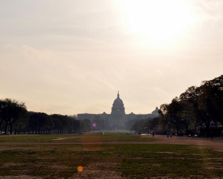 Capitol Building Sunrise, Washington DC