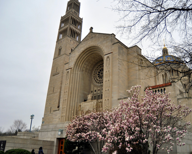 National Shrine of the Immaculate Conception, Washington DC