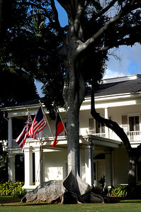 Washington Place   Majestic Pili Nut trees spread their strong roots and branches in front of Washington Place Honolulu, O'ahu, Hawai'i