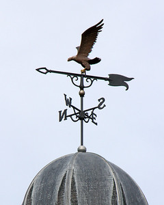 LIU Post weather vane