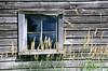 Barn window - Chisago Co.