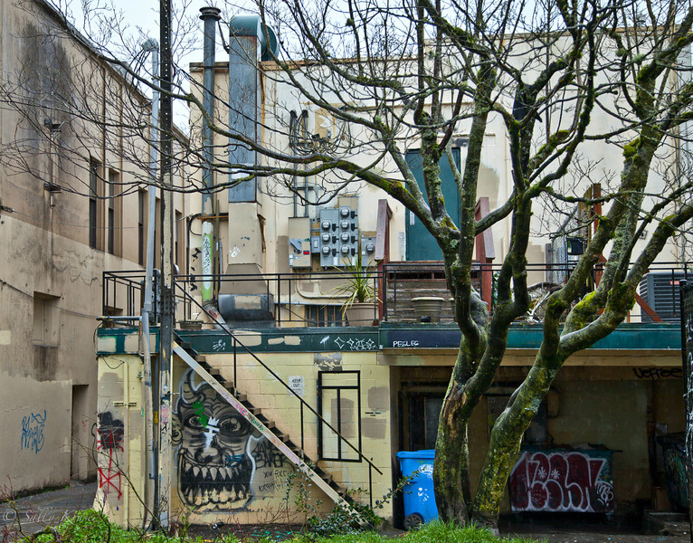 Alleyway Residence