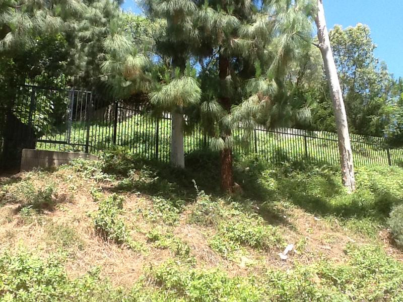 Hillside fence - Pasadena, CA