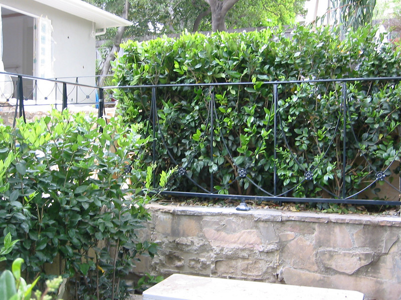 Exterior fence - Chang residence.