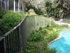 Backyard pool fence.