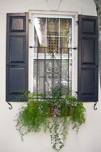 Window C-SC 8