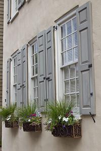 Window C-SC 6