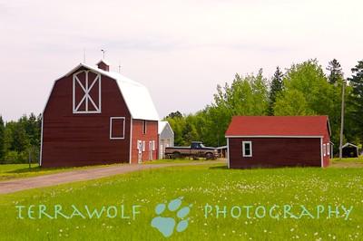 Beautiful red barns