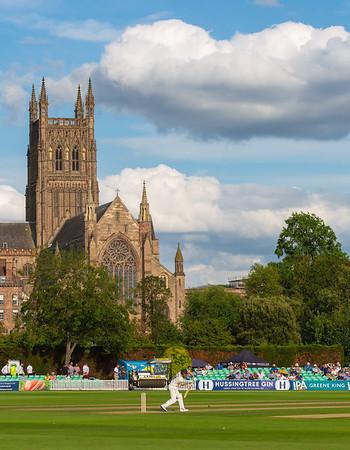 Worcester Cricket