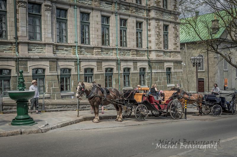 Vieux Québec 09