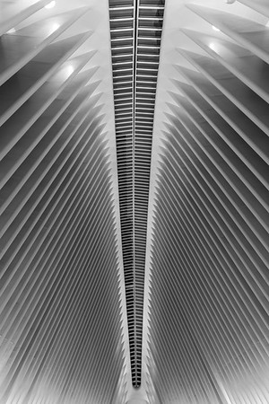 The Oculus .. World Trade Center station (PATH),  NYC