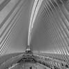 The Oculus Transportation Hub 7/24/21