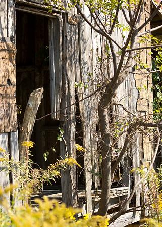 Abandoned Doorway