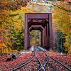 Autumn Foliage Around A Railway Trestle Bridge In The White Mountains, NH 10/5/20