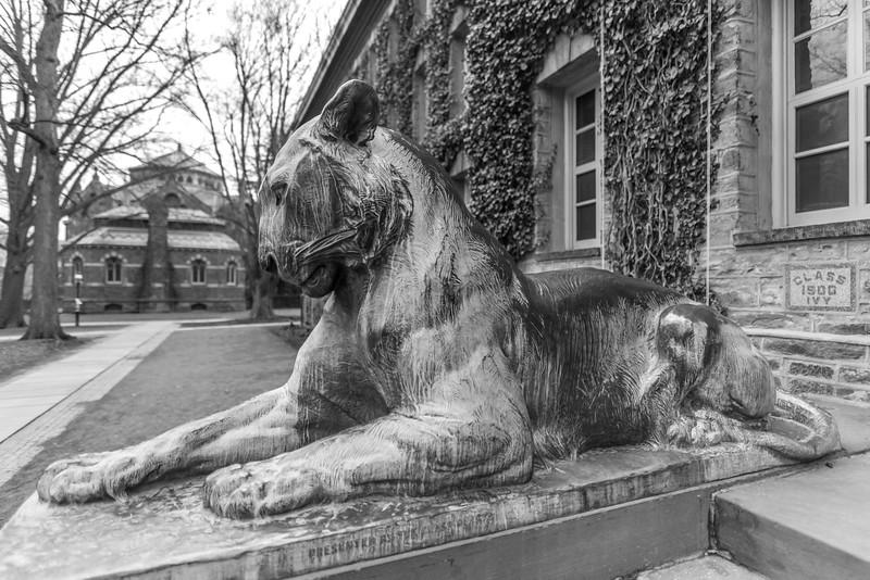 Princeton University 1/19/17