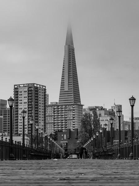 A View Down Pier 7 To The Transamerica Building, San Francisco, CA 11/6/19