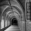 Vaulted Black and White