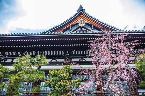 Spring  Honnō-ji Temple, Kyoto