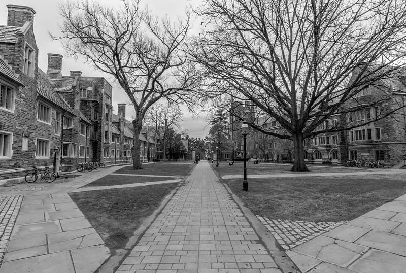Walkway at Princeton University 1/19/17