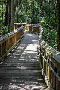 Blue Spring State Park: Orange City, FL