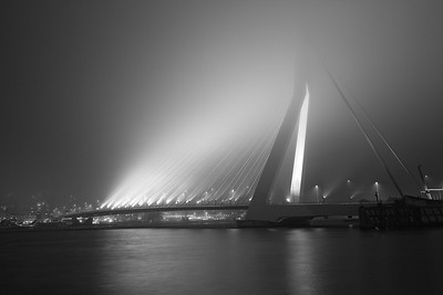 The Erasmus Bridge, Rotterdam Netherlands
